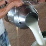 Seca derruba produção de leite