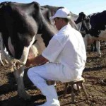 Projeto Balde Cheio proporciona melhoria de renda dos pequenos agricultores
