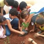 Estudantes e professores de uma escola na zona rural de Arapiraca aprendem a cultivar uma horta medicinal no jardim da instituição de ensino