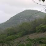 Sertão registra volume de chuvas abaixo da média histórica