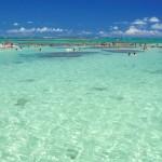 Mar de Maragogi inspira cor de tintas da indústria Suvinil
