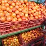 Tempo seco encarece o preço do tomate