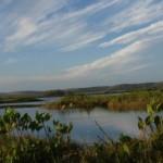 Estado estimula a preservação e manutenção das Unidades de Conservação