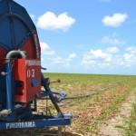 Irrigação melhora a produção de cana-de-açúcar