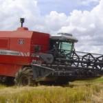 Máquina operando na colheita do arroz