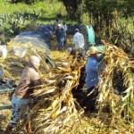 Equipamentos agrícolas facilitam o dia a  dia dos pequenos agricultores
