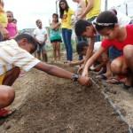 Estudantes aprendem a cultivar hortas nas escolas estaduais
