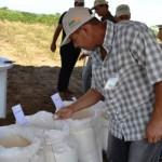 Produtores se animam com a renda proporcionada pelos produtos derivados da mandioca