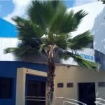 Junta Comercial do Estado de Alagoas agora oferece serviços modernos para os alagoanos