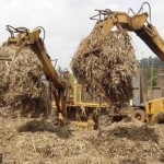 Bagaço de cana já está sendo utilizado na geração de energia em Alagoas