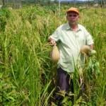 Agricultor familiar recebe recursos e assistência do Banco do Nordeste