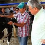 Técnica de Fertilização In Vitro chega às pequenas propriedades com o apoio do governador Teotonio Vilela Filho