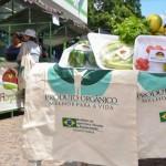 Feira de Orgânicos atrai cada vez mais consumidores
