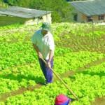Empreendedores rurais sempre investindo no fortalecimento do campo