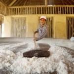 Casa de farinha ajuda a manter as famílias no campo