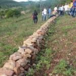 Desertificação pode ser combatida com medidas simples
