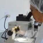 Novas pesquisas ajudam na prevenção das doenças