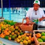 Produtores de frutas são beneficiados com mais crédito para investir na produção