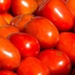 Aumento no preço do tomate assusta consumidores