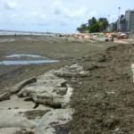 Lixo e sargaço na praia se acumulam na praia de Ponta Verde