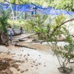 Modernas instalações do Mutum-de-Alagoas