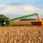 Colheita de supersafra de soja expande exportações nordestinas