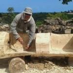 Operador de máquina leve Erivaldo José Antônio Pereira, 49 anos, responsável pela área de compostagem, vários dos troncos mais grossos que não podem ser processados pela máquina de trituração são hoje transformados em objetos como bancos, vasos e lixeiras