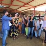 Dia de Campo ocorreu na Fazenda Agropecuária Pereira, em Junqueiro