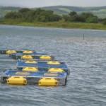 Governo Federal está cada vez mais investindo na pesca