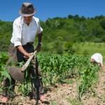 Produtores rurais ganham maior facilidade para pagar dívidas