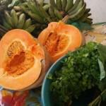 Alimentos saudáveis chegam à mesa da família alagoana