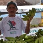 Agricultores familiares alagoanos recebem incentivos do Estado