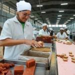 Indústria de alimentos na Região do Agreste abre novos postos de trabalho