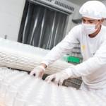 Novas indústrias desembarcarão em Alagoas
