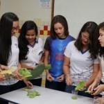 O juá, popularmente usado na higienização dos dentes e a palma, tradicional ingrediente da ração de animais do campo, encontraram nova utilidade com o trabalho das garotas