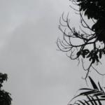 Vórtice Ciclônico de Altos Níveis (Vcan) começa a se dissipar a partir de terça-feira