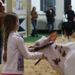 17 jovens de 8 a 15 anos, todos filhos de cooperados da Frísia, participam desde dezembro do ano passado de quatro módulos do Clube de Bezerras.