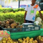 Incentivo à agricultura familiar