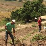 Produtores rurais devem procurar o BNB para renegociação de dívidas