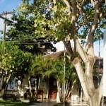 Cooperativa de Produção Leiteira de Alagoas (CPLA) fomentando os produtores