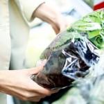 Braskem investindo cada vez mais na sustentabilidade