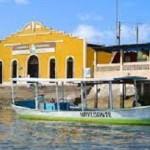 Projeto Copaíba visa a sustentabilidade da comunidade