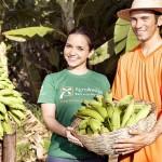 Clientes do Banco do Nordeste poderão renegociar os financiamentos no setor agrícola