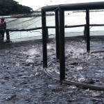 Piscicultura sofre com o aumento dos insumos para alimentar os peixes