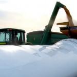 Mercado de silo expande com o aumento da safra nacional