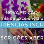 """Braztoa abre inscrições para nova edição de """"Experiências incríveis"""""""