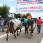 Expo Bacia de Batalha movimenta a atividade da pecuária alagoana no sertão alagoano